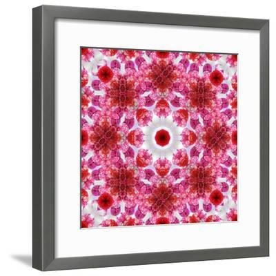 A Mandala Ornament from Flowers, Photographic Layer Work-Alaya Gadeh-Framed Photographic Print