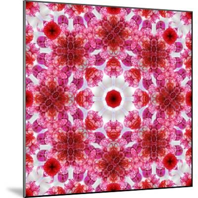 A Mandala Ornament from Flowers, Photographic Layer Work-Alaya Gadeh-Mounted Photographic Print