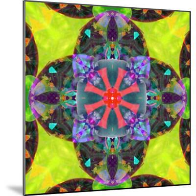 A Mandala from Flowers, and Ornaments-Alaya Gadeh-Mounted Photographic Print