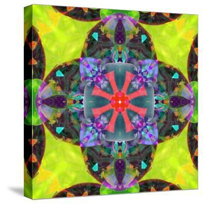 A Mandala from Flowers, and Ornaments-Alaya Gadeh-Stretched Canvas Print