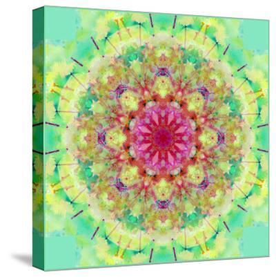 Symmetric Floral Montage-Alaya Gadeh-Stretched Canvas Print