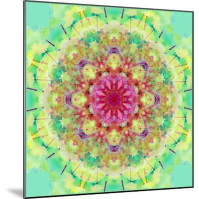Symmetric Floral Montage-Alaya Gadeh-Mounted Photographic Print