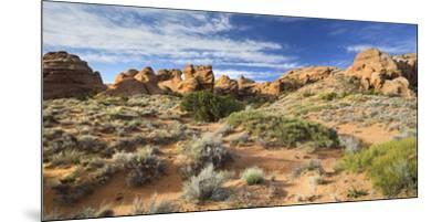 Sandstone Formations in the Devils Garden, Arches National Park, Utah, Usa-Rainer Mirau-Mounted Premium Photographic Print