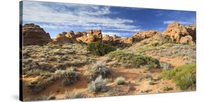 Sandstone Formations in the Devils Garden, Arches National Park, Utah, Usa-Rainer Mirau-Stretched Canvas Print