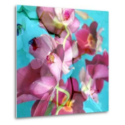 Dreamy Pink Blooming Miltonia Orchid and Phaleaonopsis Infront of Light Blue Backgound-Alaya Gadeh-Metal Print