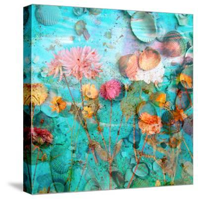 Composing of Flowers and Mussels-Alaya Gadeh-Stretched Canvas Print