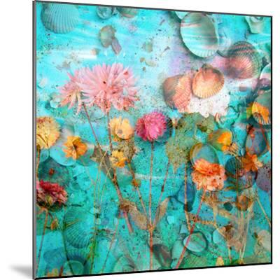 Composing of Flowers and Mussels-Alaya Gadeh-Mounted Photographic Print