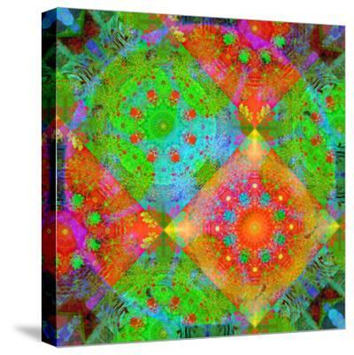 Geometrical Ornament of Flower Photos-Alaya Gadeh-Stretched Canvas Print