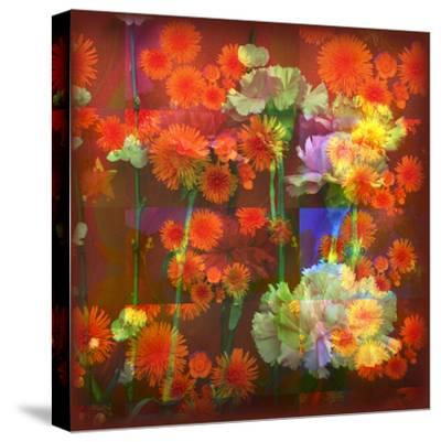 An Abstract Geometric Floral Montage Photographic Layer Work-Alaya Gadeh-Stretched Canvas Print