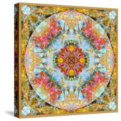 A Mandala Made Out of Flowers and Plants-Alaya Gadeh-Stretched Canvas Print