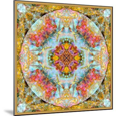 A Mandala Made Out of Flowers and Plants-Alaya Gadeh-Mounted Photographic Print