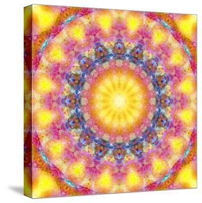 Mandala of Flower Photographies-Alaya Gadeh-Stretched Canvas Print