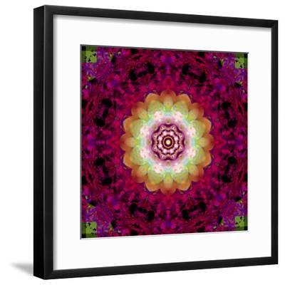 Symmetrical Ornament of Flower Photos-Alaya Gadeh-Framed Photographic Print