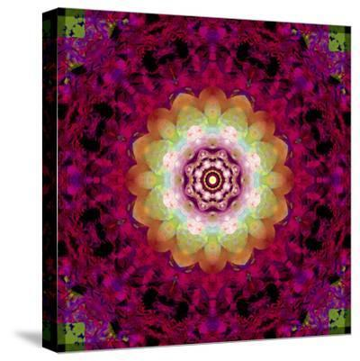 Symmetrical Ornament of Flower Photos-Alaya Gadeh-Stretched Canvas Print