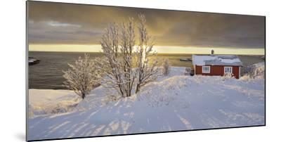 Hut in Reine (Village), Moskenesoya (Island), Lofoten, 'Nordland' (County), Norway-Rainer Mirau-Mounted Photographic Print