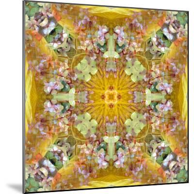 A Floral Montage with Leafes-Alaya Gadeh-Mounted Photographic Print