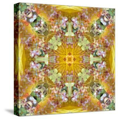 A Floral Montage with Leafes-Alaya Gadeh-Stretched Canvas Print