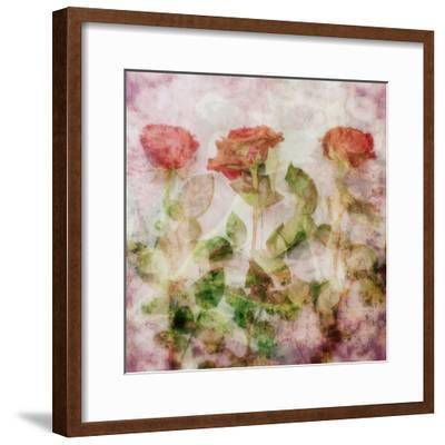 A Dreamy Floral Montage from Three Red Roses-Alaya Gadeh-Framed Photographic Print