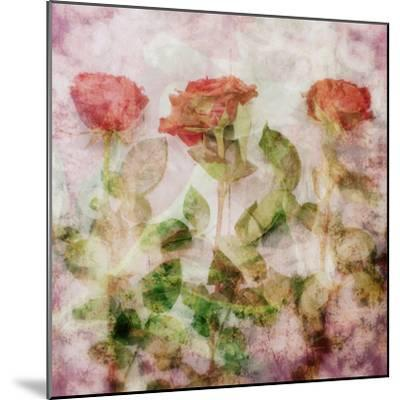 A Dreamy Floral Montage from Three Red Roses-Alaya Gadeh-Mounted Photographic Print