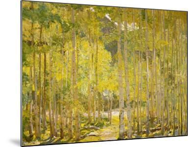 Aspen Forest-Oscar Berninghouse-Mounted Art Print