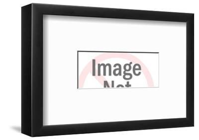 Plastic-Pop Ink - CSA Images-Framed Art Print