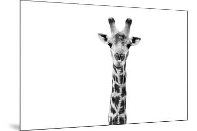 Safari Profile Collection - Giraffe Portrait White Edition II-Philippe Hugonnard-Mounted Photographic Print