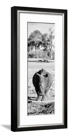 Awesome South Africa Collection Panoramic - Black Rhino B&W-Philippe Hugonnard-Framed Photographic Print