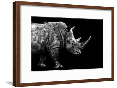 Safari Profile Collection - Rhino Black Edition-Philippe Hugonnard-Framed Photographic Print
