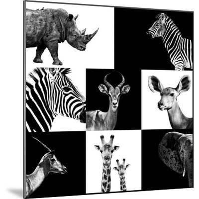 Safari Profile Collection-Philippe Hugonnard-Mounted Photographic Print