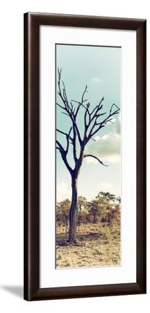 Awesome South Africa Collection Panoramic - Dead Tree in the Savannah II-Philippe Hugonnard-Framed Photographic Print