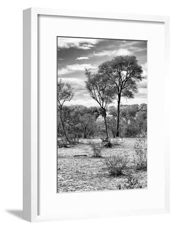 Awesome South Africa Collection B&W - African Landscape V-Philippe Hugonnard-Framed Photographic Print