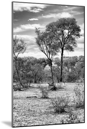 Awesome South Africa Collection B&W - African Landscape V-Philippe Hugonnard-Mounted Photographic Print