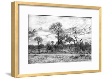 Awesome South Africa Collection B&W - African Landscape II-Philippe Hugonnard-Framed Photographic Print