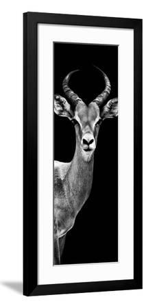 Safari Profile Collection - Antelope Black Edition III-Philippe Hugonnard-Framed Photographic Print