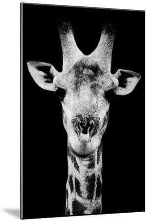 Safari Profile Collection - Portrait of Giraffe Black Edition V-Philippe Hugonnard-Mounted Photographic Print
