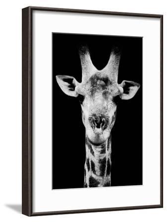 Safari Profile Collection - Portrait of Giraffe Black Edition V-Philippe Hugonnard-Framed Photographic Print