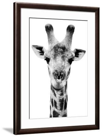 Safari Profile Collection - Portrait of Giraffe White Edition V-Philippe Hugonnard-Framed Photographic Print