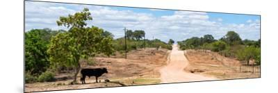 Awesome South Africa Collection Panoramic - Road in the Savannah-Philippe Hugonnard-Mounted Photographic Print