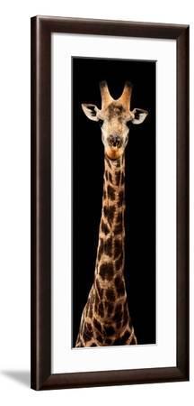 Safari Profile Collection - Giraffe Black Edition XI-Philippe Hugonnard-Framed Photographic Print