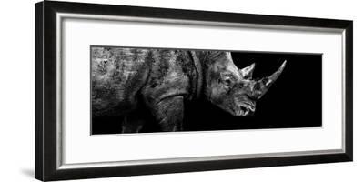 Safari Profile Collection - Rhino Black Edition III-Philippe Hugonnard-Framed Photographic Print