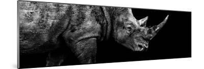 Safari Profile Collection - Rhino Black Edition III-Philippe Hugonnard-Mounted Photographic Print