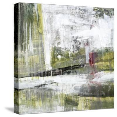 Copper Dust-Jason Jarava-Stretched Canvas Print