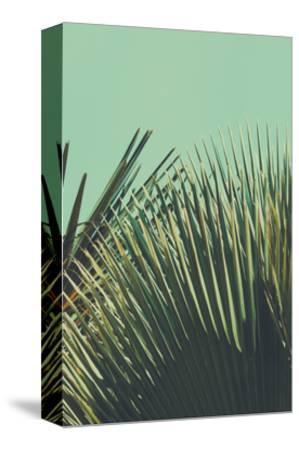 Abstrac Tropical Vintage Background. Retro Toned.-sk901-Stretched Canvas Print