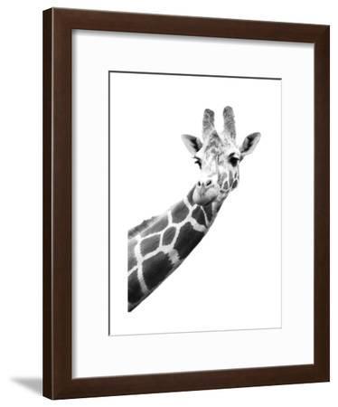 Giraffe--Framed Art Print