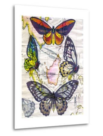 Butterfly Map IV-John Butler-Metal Print