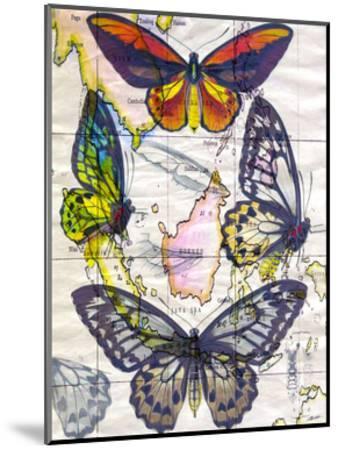 Butterfly Map IV-John Butler-Mounted Art Print