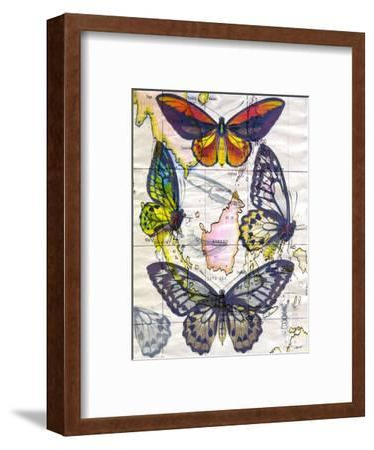 Butterfly Map IV-John Butler-Framed Art Print