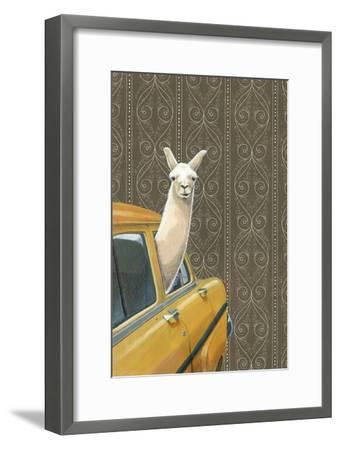 Taxi Llama-Jason Ratliff-Framed Art Print