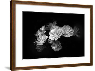 When the Lights Go Down-Philippe Sainte-Laudy-Framed Photographic Print