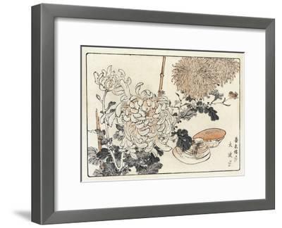 Stylized Flowers with Seashells--Framed Art Print